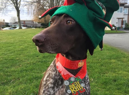 The fifth annual Big Elf Run returns to Vancouver this month