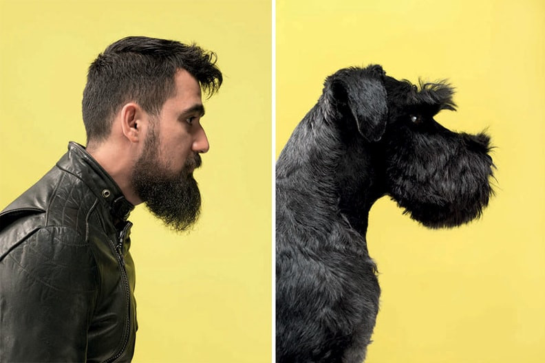 Dog owner with his dog looking very similar