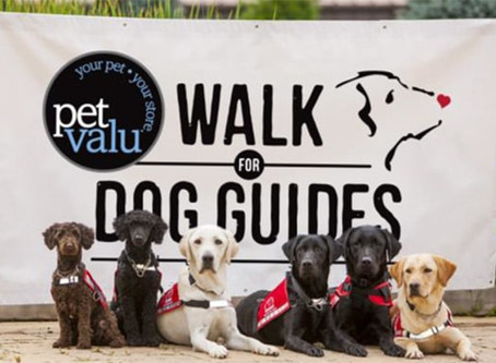 National fundraising event for guide dogs goes virtual this weekend