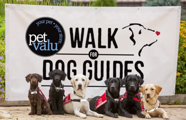 Walk for Dog Guides event picture