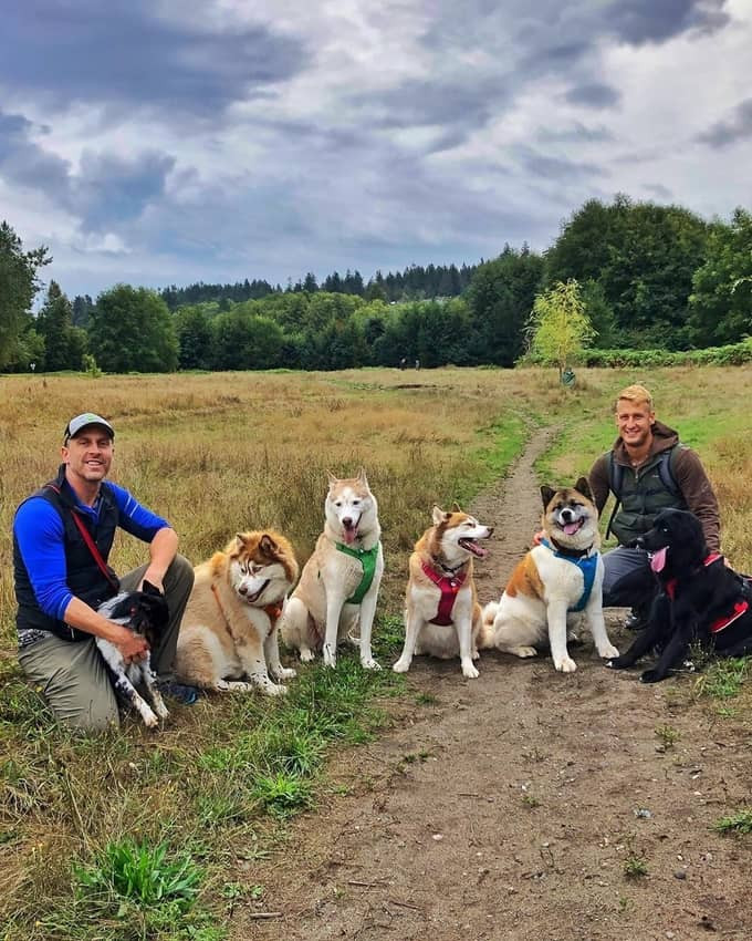 The Vancouver Dog Dudes with their pack