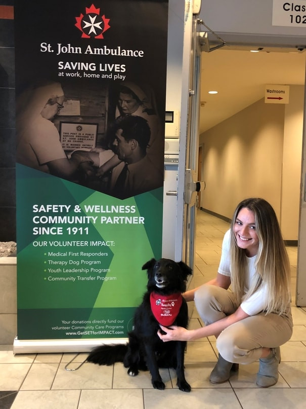 St John Ambulance therapy dog smiling at the camera