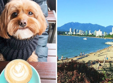 A huge dog-friendly coffee crawl is taking place in Vancouver next month