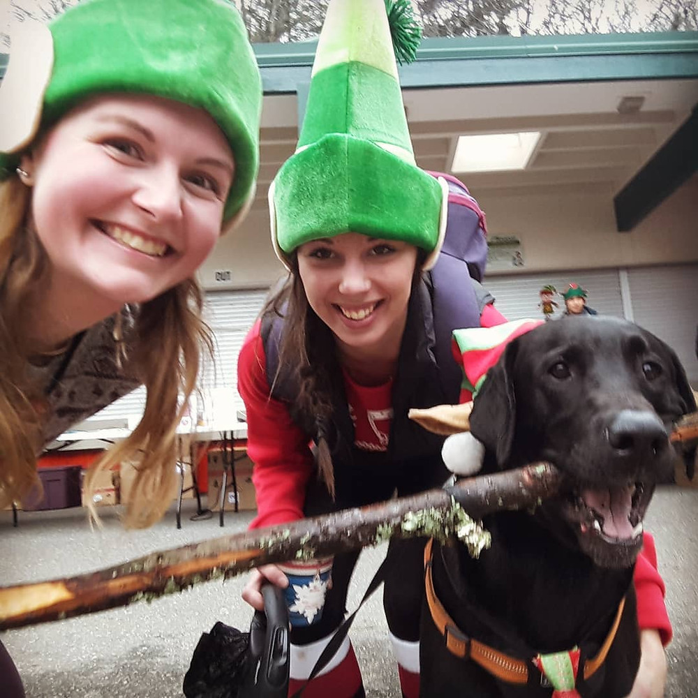 Dog owners enjoying the last Vancouver Elf Run with their dog