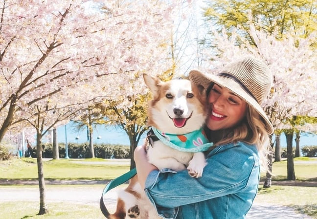 Alfie and Teresa having a walk between cherry blossoms