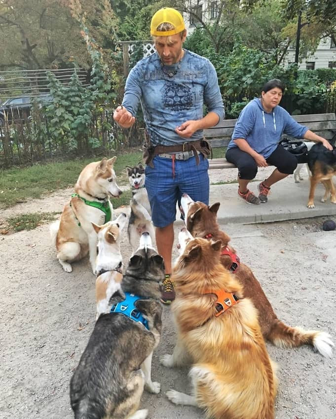 The Vancouver Dog Dudes training