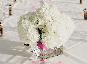 Hamptons Weddings - Wilde-Scout-Photo-Co