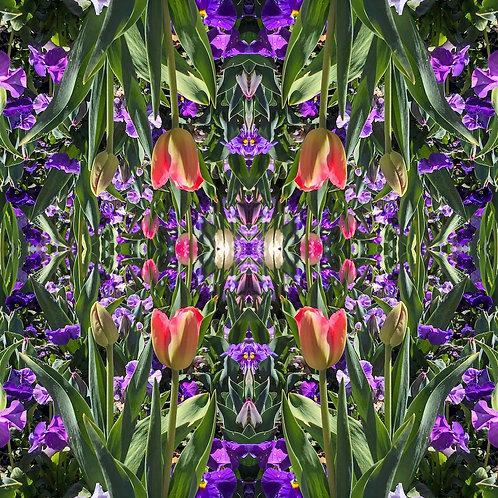 'Kaleidoscope II' by Tanya Rose