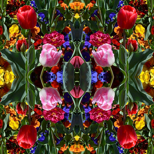 'Florascopes VII' by Tanya Rose