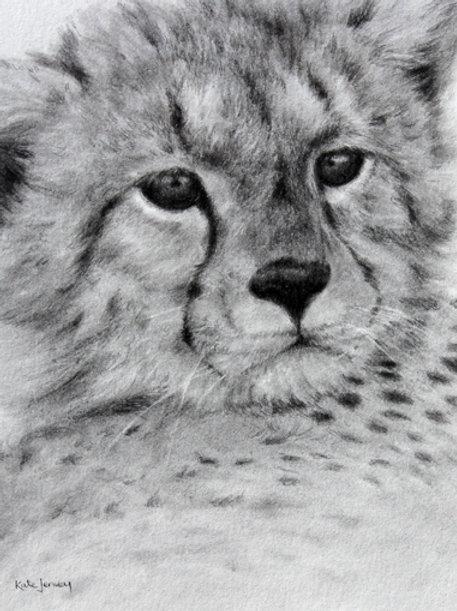 'Cheetah Cub' by Kate Jenvey