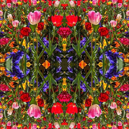 'Kaleidoscope V' by Tanya Rose