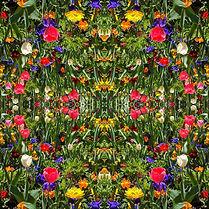Tanya-Rose-Kaleidoscope-I-3.jpeg