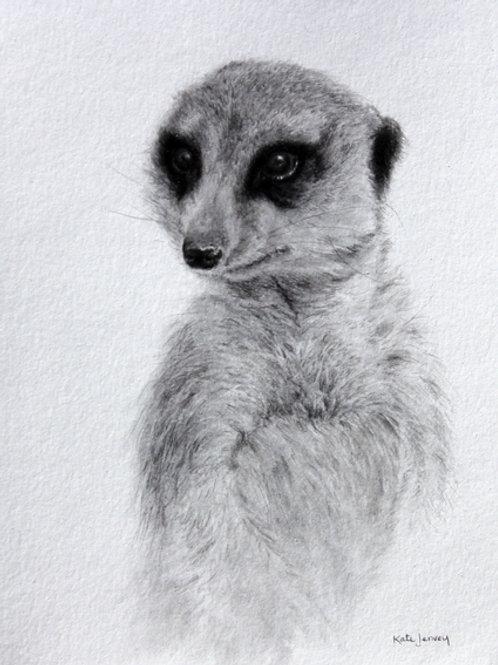 'Lookout' by Kate Jenvey