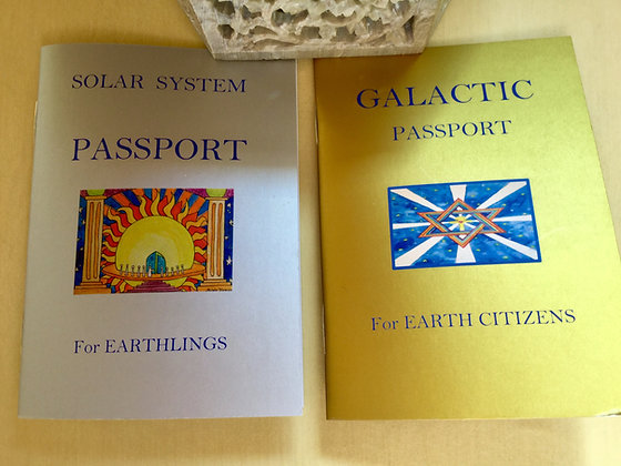 Solar System and MW Galactic Passports