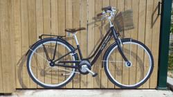 Faux Bike