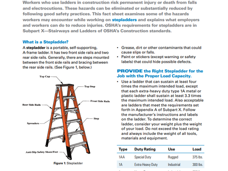"""""""Look for overhead power lines before handling or climbing a ladder."""""""