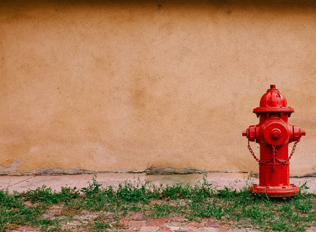 The most common type of emergency for small businesses is fire!