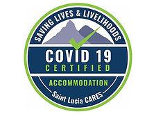 Covid 19 Certification.jpg