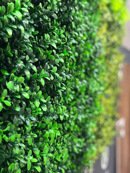Painéis Verdes