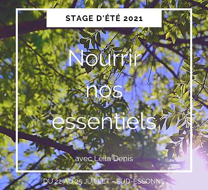 Stage d'été 2021.png
