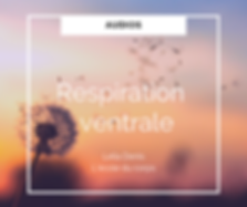 Respiration ventrale - visuel.png