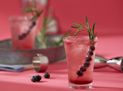 Cocktail_BlueberryRosemary3544.jpg