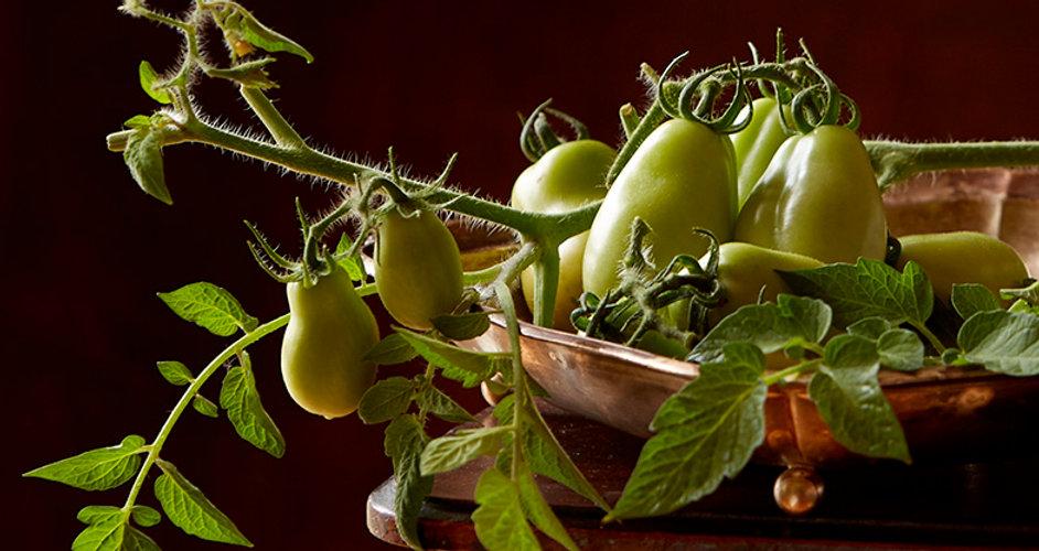 GreenTomatoes-0295.jpg