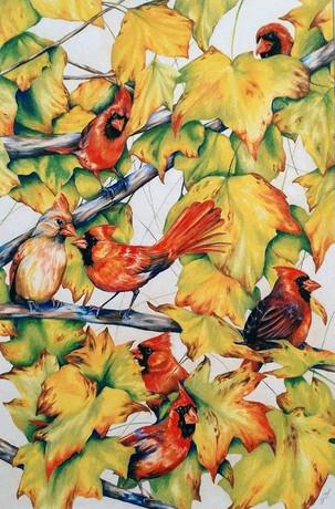 Cardinals Camo