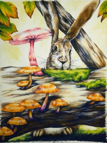 Rabbit Accompaniment