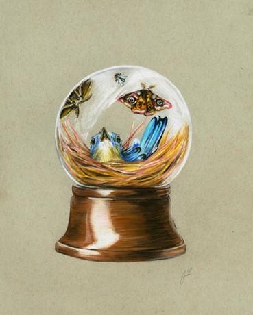Nest Globe