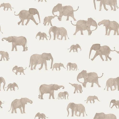 Punto algodón Família elefantes