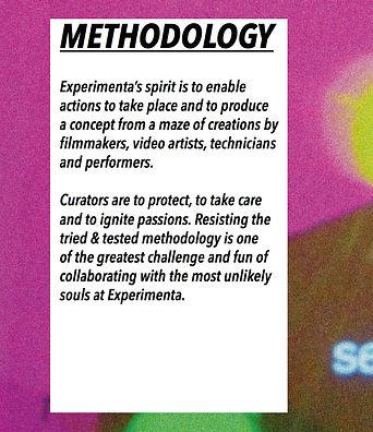 Video artists