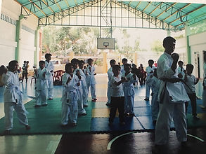 progressive karate in davao