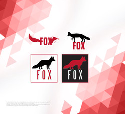 Proposed Fox Logo and Reviews
