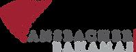 ANS_Logo.png