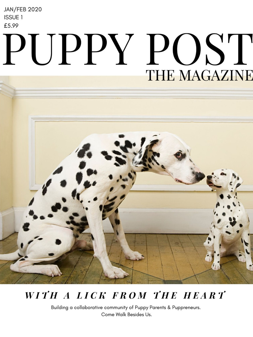 Puppy Post The Magazine Issue 1 - Jan/Feb 2020