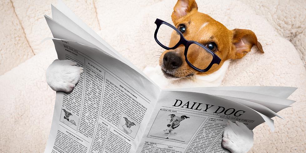 PuppyPostTheMagazine-DogMagazine.png