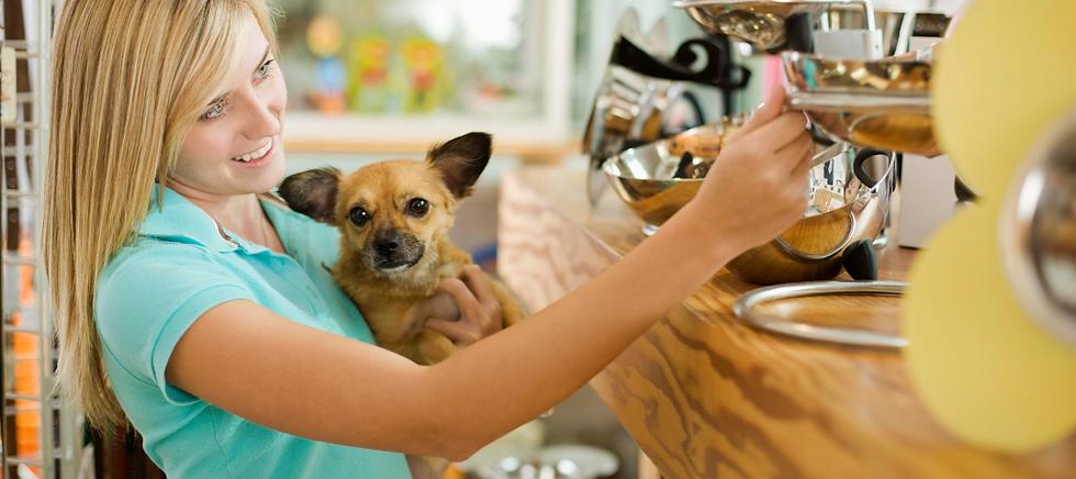 Puppypost.co.uk-Shopsmall-doggift_treats