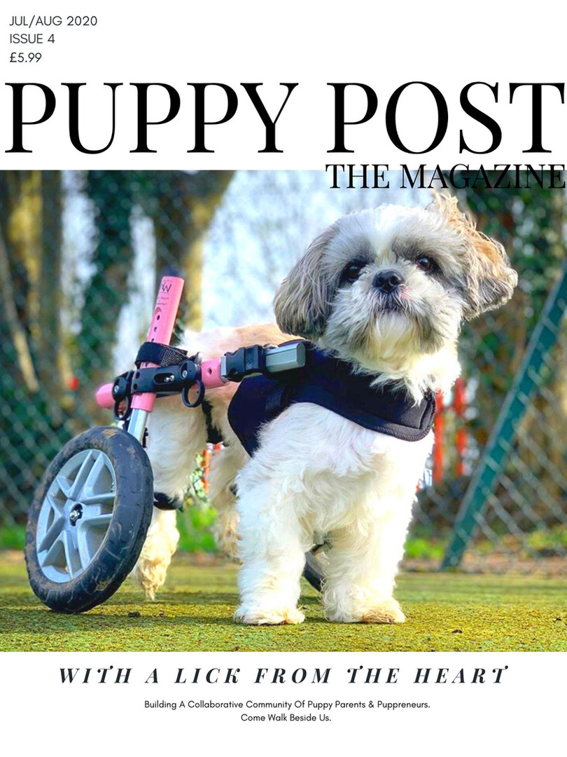 Puppy Post The Magazine Issue 4 - July/Aug 2020