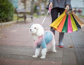 www.puppypost.co.uk.jpg