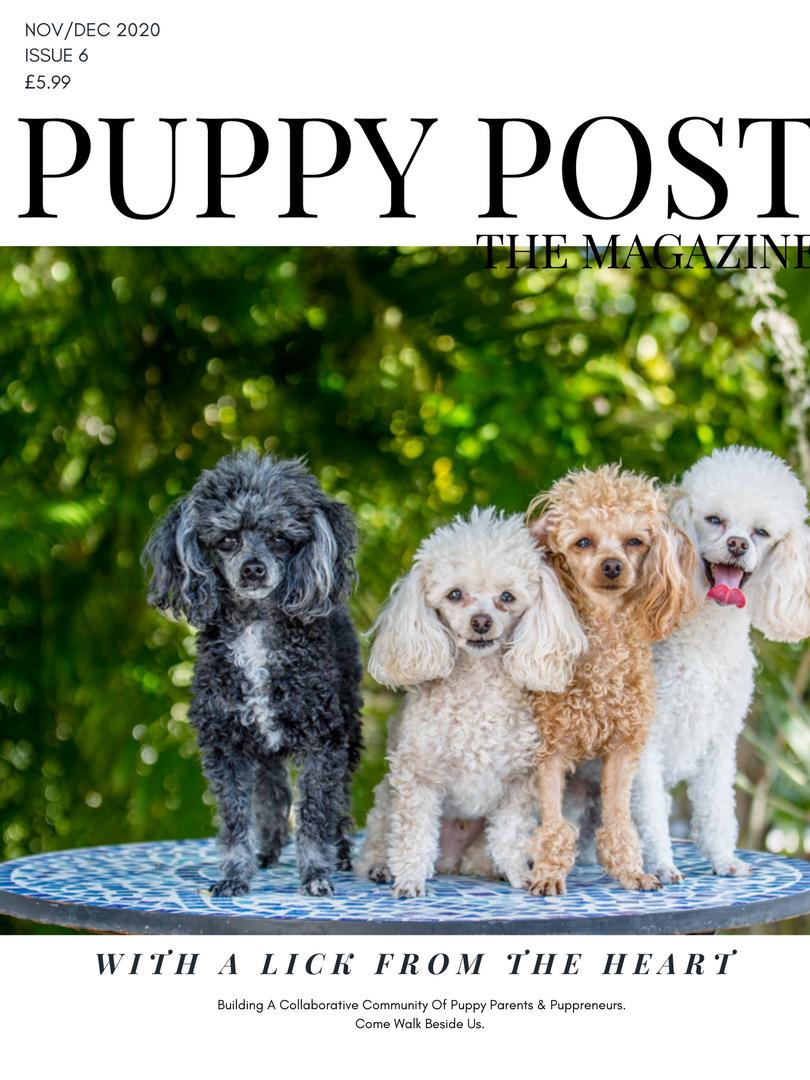 Puppy Post The MAgazine Issue 6 - Nov-Dec 2020