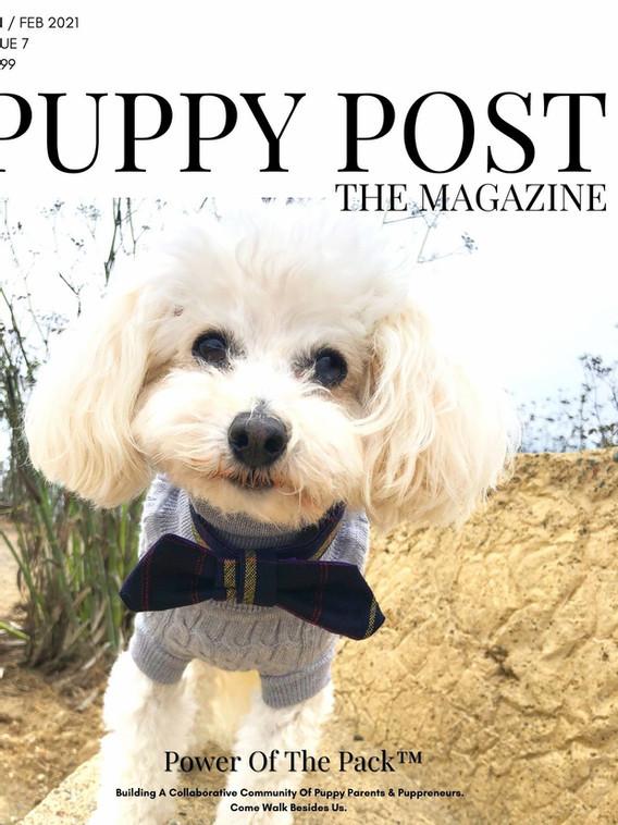 Puppy Post The Magazine Issue 7 - Jan-Feb 2021