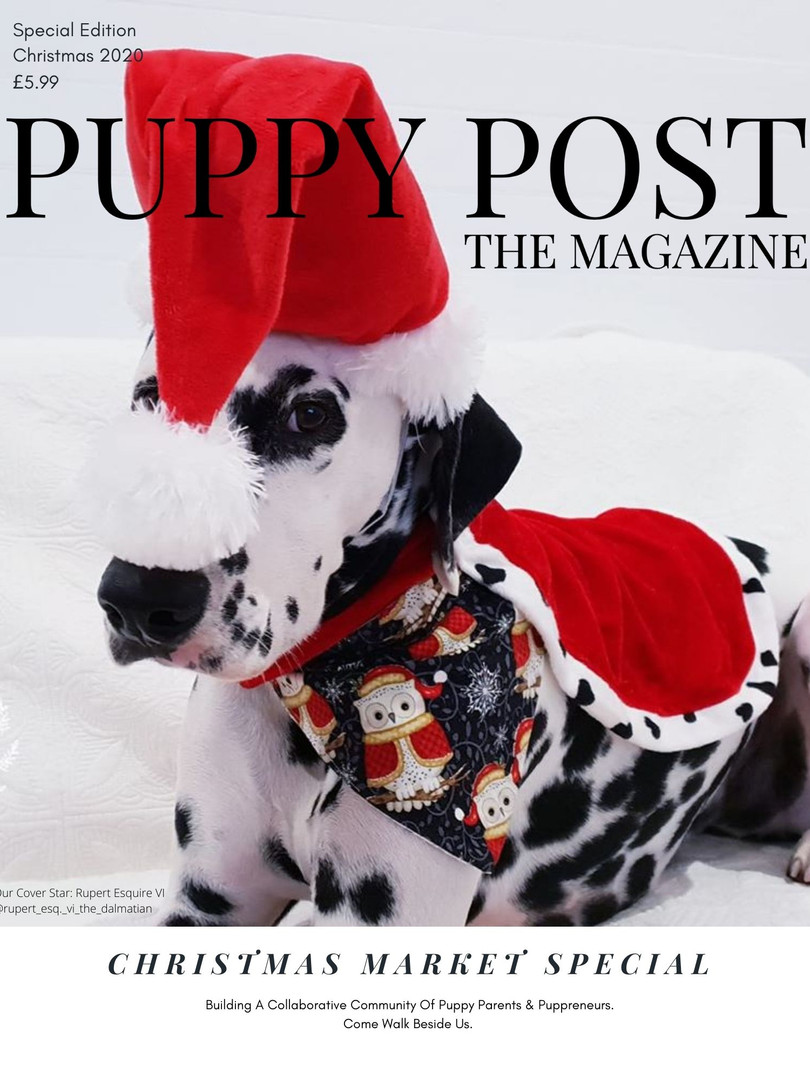Christmas Catalogue 2020 Puppy Post The Market