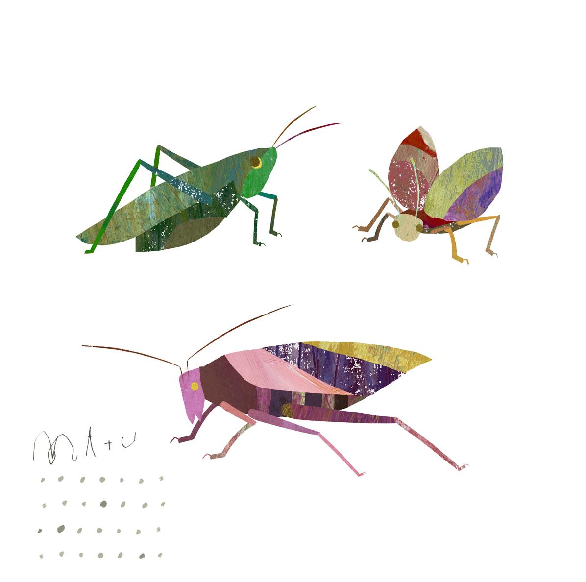 10月 虫の声