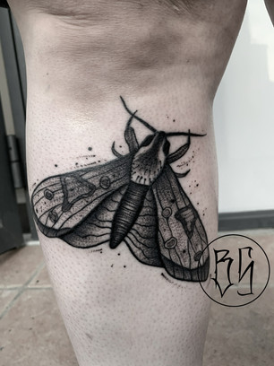 tatouage papillon par bens tattooer