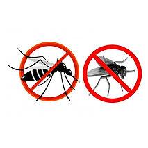 panneau-avertissement-moustique-design-p