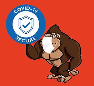 Covid Gorilla.png