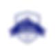 Teyra GeoConsulting LLC logo.png