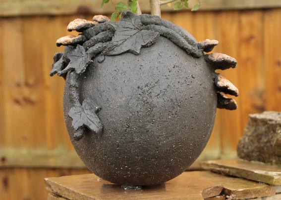 Bracket Fungus Pot. 1.jpg