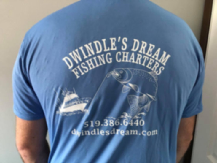Dwindle's Tee Shirt Back.jpg
